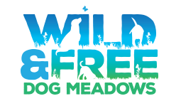 wild free dog meadows