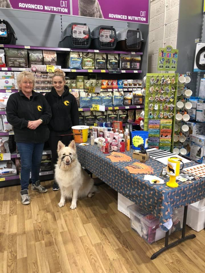 Jollyes Pet Superstore North Harbour 27 Apr 19